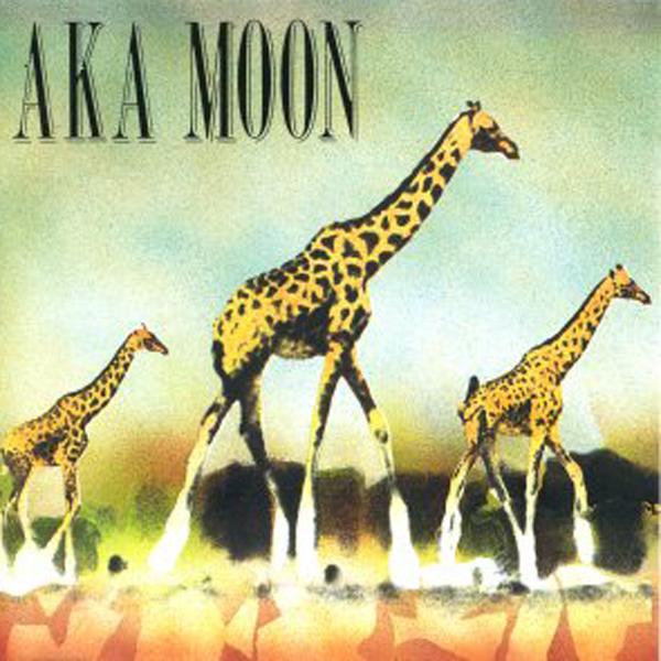 Aka Moon Net Worth