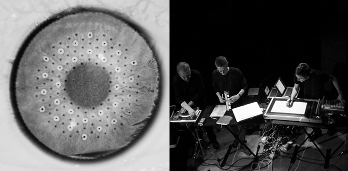 FIBROSCOPIE <+> ONE - ORCHESTRE NATIONAL ELECTROACOUSTIQUE