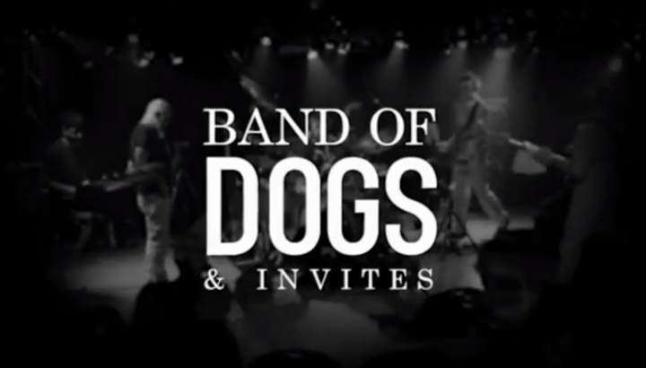 RETROSPECTIVE BAND OF DOGS